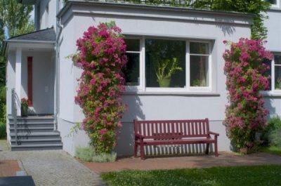 Matrix Reimprinting Seminarorte - Bad Homburg